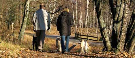 Hundar i Haninge