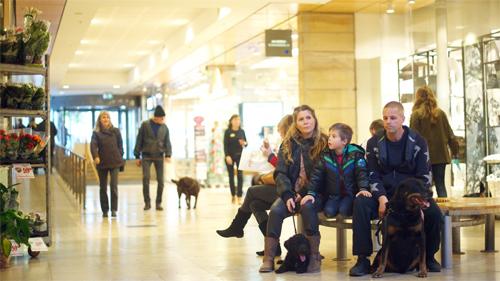 Foto från faltoverstencentrum.se