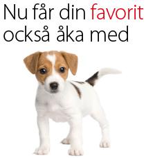 Foto från swebus.se