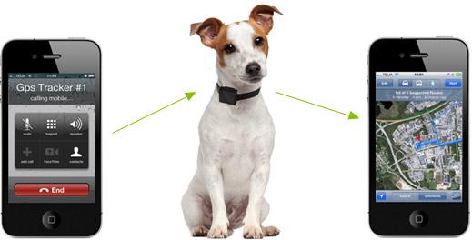 GPS-sändare till hunden
