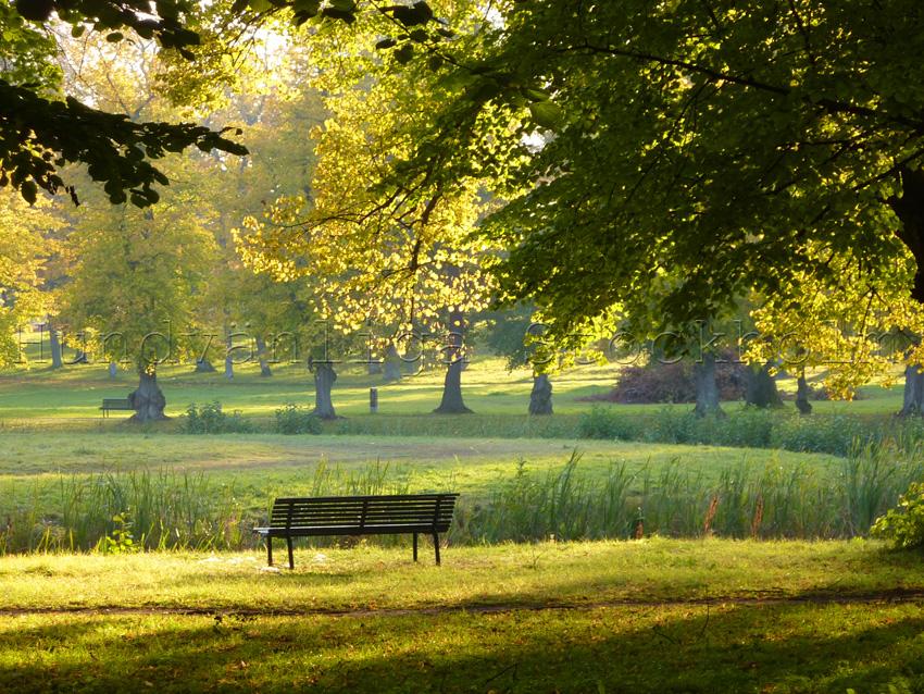 Drottningholm hundpark