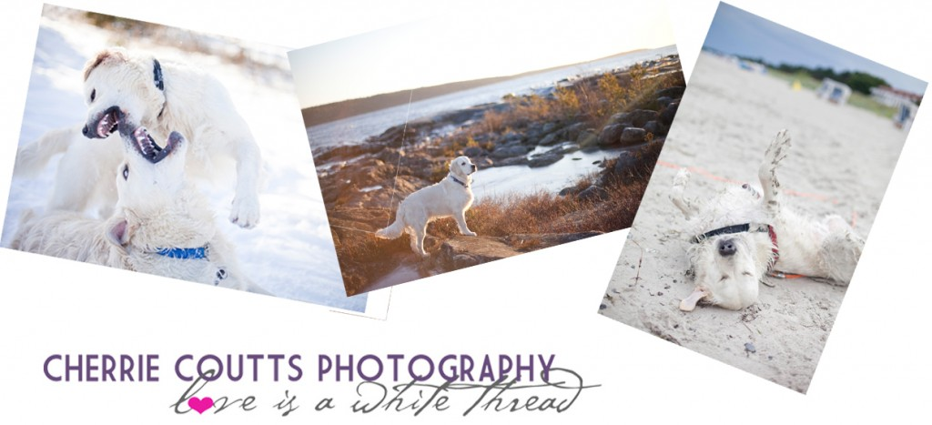 Cherrie Coutts Photography