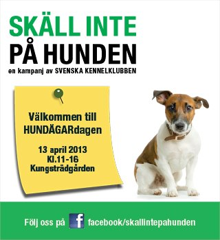 Stockholms Hundägardag 2013