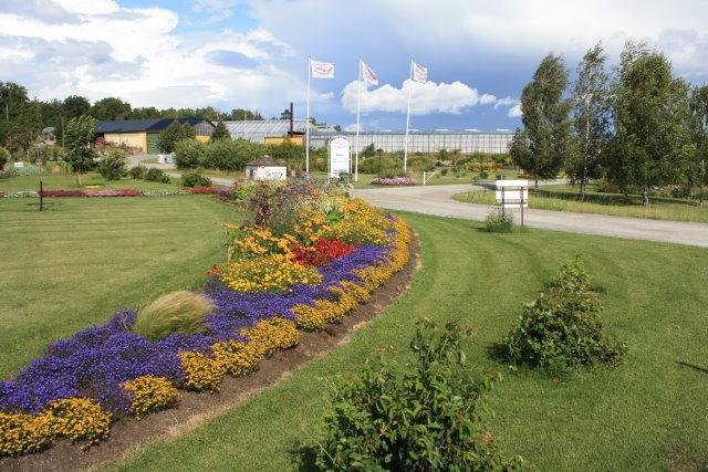 handelsträdgård stockholm