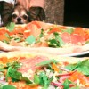 Foto från La Pizza