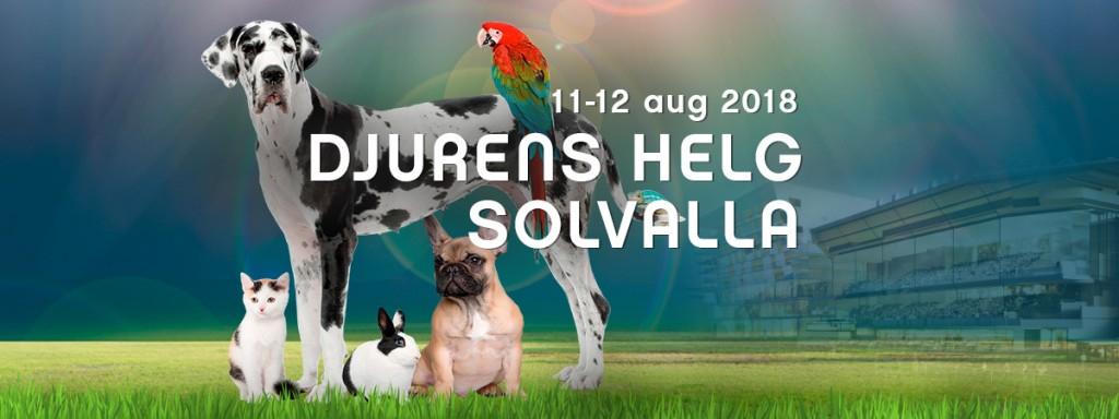 djurens-helg-solvalla-2018